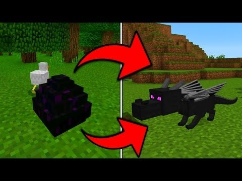 comment faire eclore un oeuf