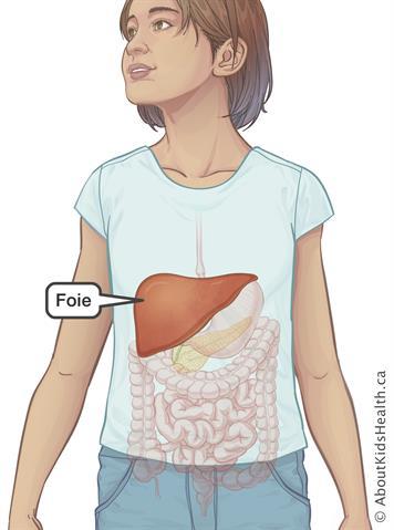 pourquoi faire 2 biopsie