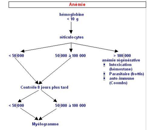 pourquoi faire un myelogramme