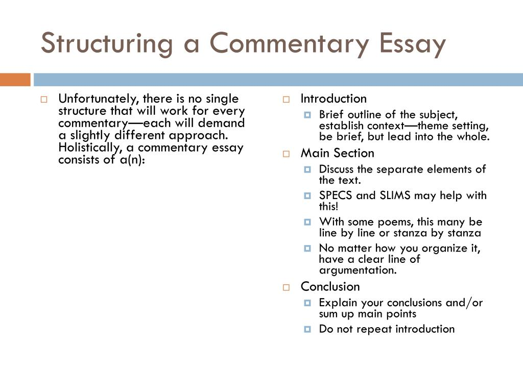 Essay commentary